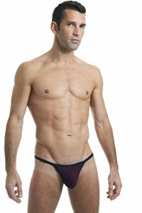 L'Homme Invisible Striptease Prune Thong Underwear Purple MY11X-S12