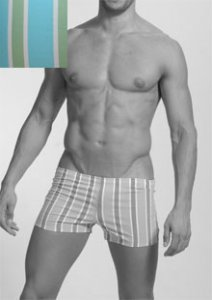 Geronimo Stripes Square Cut Trunk Swimwear Light Blue/Green 906b8