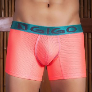 Gigo WEBS CANDY Long Boxer Underwear