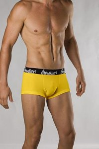 Grundies Plain Fit Shorts Boxer Brief Underwear Yellow
