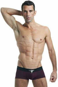 L'Homme Invisible Prune V Boxer Brief Underwear Purple MY19-S12