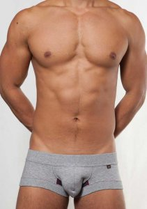 Toot Sweat Nano Trunk Underwear Grey NB704223