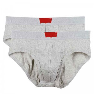 Levi's [2 Pack] Classic Brief Underwear Heather Grey 200