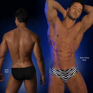 Falocco Collection Silver Flame Swimmer's Brief Swimwear