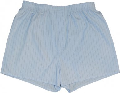 Charlie Dog The Bradley Stripes Loose Boxer Shorts Underwear Light Blue 182-952