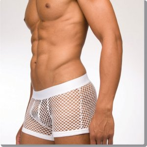Modus Vivendi Modern London C-Through Boxer Brief Underwear White 07721