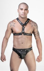Whip It Leather Y Harness HN2