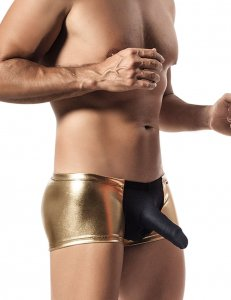 Pikante Castro Fashion Boxer Brief Underwear Gold 8395