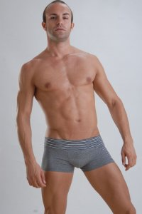 Geronimo Boxer Brief Underwear Grey Stripe 956B2