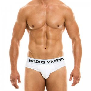 Modus Vivendi Classic Brief Underwear White 02915