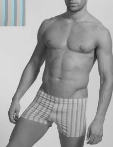 Geronimo Stripes Square Cut Trunk Swimwear Grey/Blue 908b8