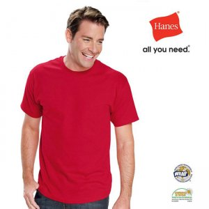 Hanes Liberty Short Sleeved T Shirt AU5280