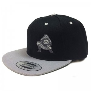 Ajaxx63 Catcher Two Tone Flat Brim Cap Black/Grey CP30