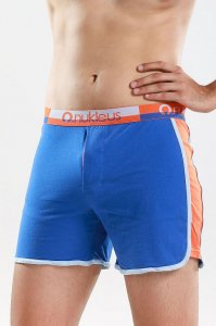 Nukleus Gift Collection The Gift's Nature Loose Boxer Shorts Underwear Blue N-WG-03