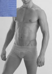 Geronimo Stripes Boxer Brief Underwear Blue 956b2