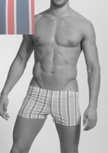 Geronimo Stripes Square Cut Trunk Swimwear Grey/Red 906b8