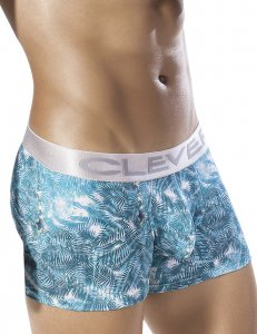 Clever Wheat Spikes Boxer Brief Underwear Green 2257