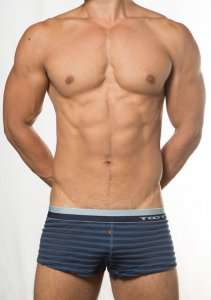 Toot See Through Stripe Trunk Underwear Navy KT15E386