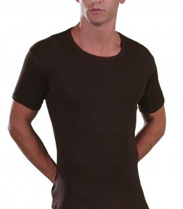 Lord Open Neck Short Sleeved T Shirt Brown 230