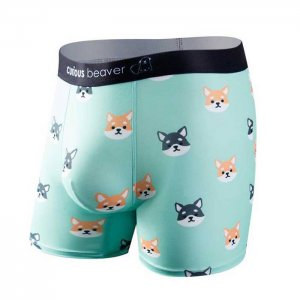 Curious Beaver Doge Boxer Brief Underwear Dogs