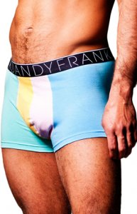 Frank Dandy Colorblock Boxer Brief Underwear Mint 10610 USA1