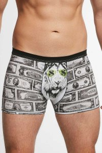 Cornette Tattoo Dollars 280/167 Boxer Brief Underwear Grey