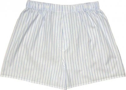 Charlie Dog The Alec Stripes Loose Boxer Shorts Underwear Blue 444-128