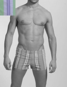 Geronimo Stripes Square Cut Trunk Swimwear Violet/Green 910b8