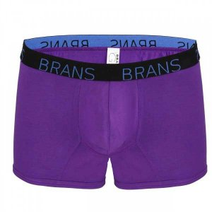 Brans G Series MicroModal Boxer Brief Underwear Purple