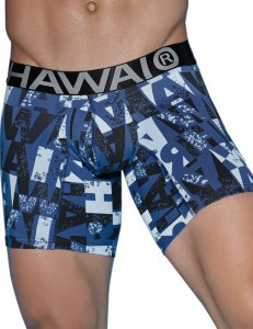 Hawai Grafitti Logo Boxer Brief Underwear Blue 4959
