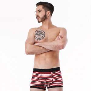 Rock N Fresh Johnny Striped Boxer Brief Underwear Red