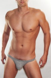 WildmanT Ball Lifter C Ring Bikini Jock Strap Underwear Grey WT-44