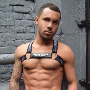 Breedwell Bottom Twink XS Hazard Circuit Harness BW00968