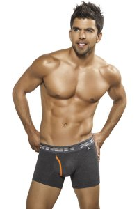 Xtremen Open Fly Boxer Brief Underwear Grey 51316