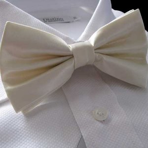 Distino Of Melbourne Solid Bow Tie Ivory DB3