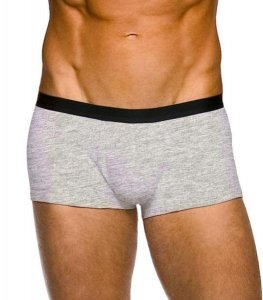 Kiniki Apollo Hipster Boxer Brief Underwear Silver APR