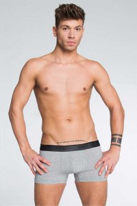 Exzo Classic Boxer Brief Underwear Grey