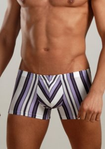 Geronimo Stripes Boxer Brief Underwear Violet 7802B2
