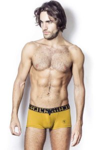 L'Homme Invisible Ambrosia V Boxer Brief Underwear Gold MY19-AMB-OR1