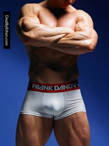 Frank Dandy Hank Boxer Brief Underwear White 10248-000