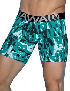 Hawai Grafitti Logo Boxer Brief Underwear Green 4959