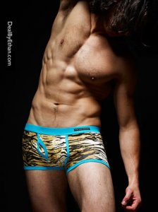 Frank Dandy Tiger Print Boxer Brief Underwear 10237-610