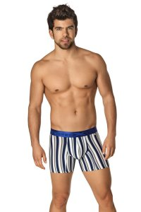 Xtremen Microfiber Boxer Brief Underwear Blue 51329