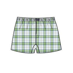Minerva Short Popline Check Loose Boxer Shorts Underwear Light Green 23073