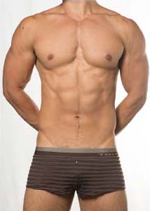 Toot See Through Stripe Trunk Underwear Brown KT15E386